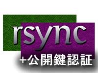 rsyncによるバックアップ 公開鍵認証