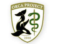 ORCA 日医標準レセプトソフト