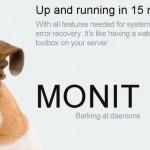 monit not monitored