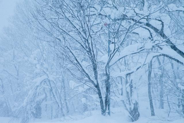 週末今シーズン最強の寒波