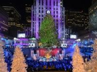 ニューヨーク クリスマス モミの木