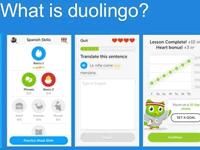 ドュオリンゴ(Duolingo)で語学を学んでみたら、思わぬことが判明