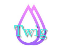 FuelPHP Twig