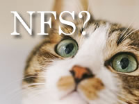 NFSサーバの構築 ディレクトリ共有 CentOS7
