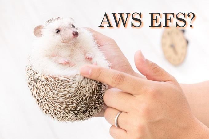 AWS EFS