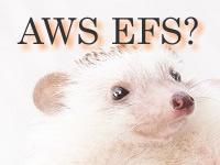 AWS EFSでディレクトリ共有 Amazon Linux