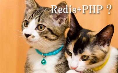 Redis+PHPでランキングを簡単作成