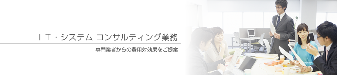 IT・システム コンサルティング業務